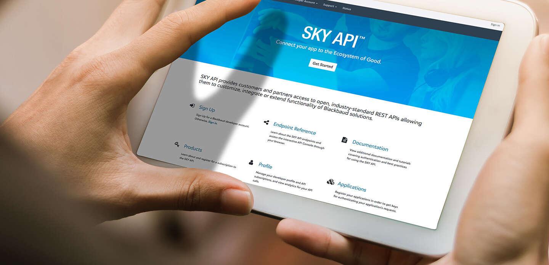 sky-api-new